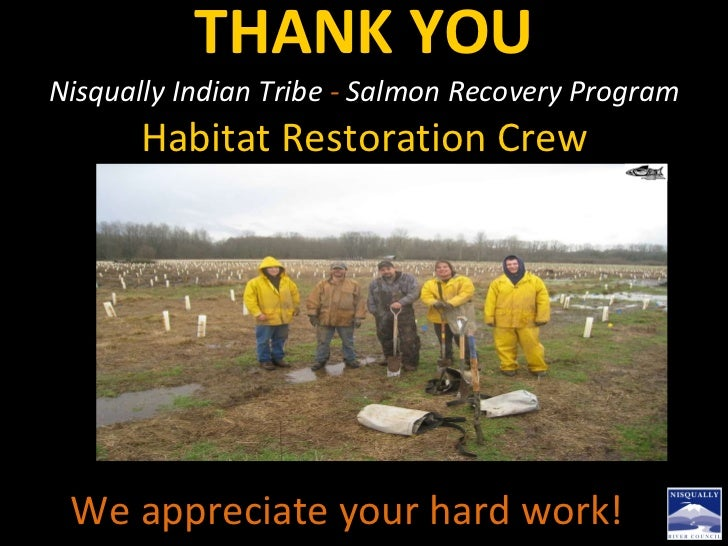THANK YOU Nisqually Indian Tribe  -  Salmon Recovery Program  Habitat Restoration Crew We appreciate your hard work!