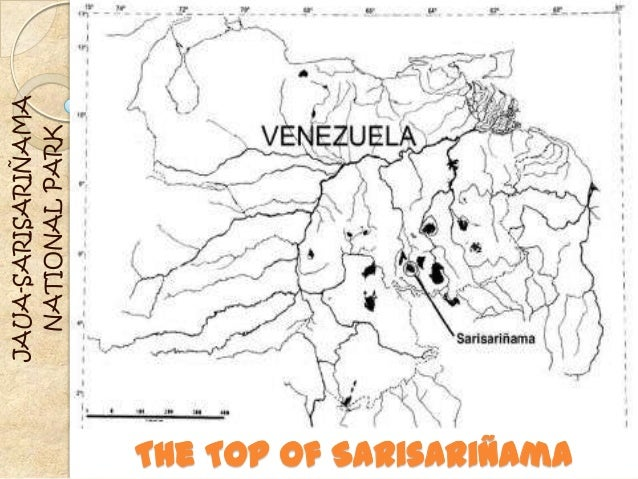 The top of sarisariñama
