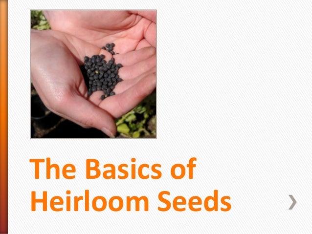 The Basics of Heirloom Seeds