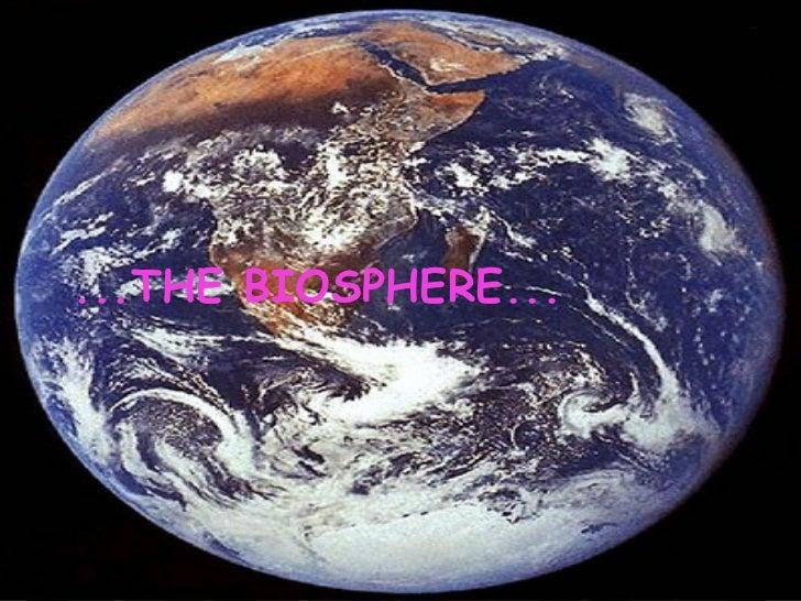 ...THE BIOSPHERE...