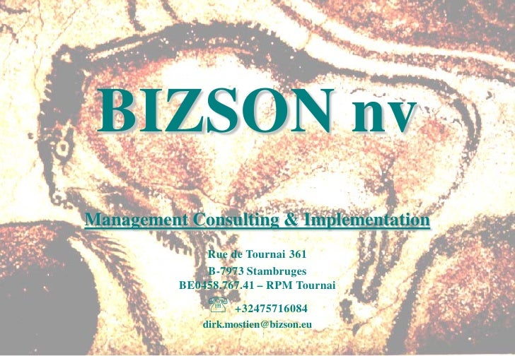 BIZSON nv Management Consulting & Implementation               Rue de Tournai 361               B-7973 Stambruges         ...