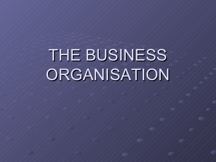 THE BUSINESS ORGANISATION