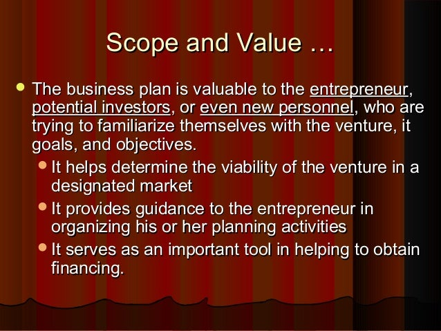 Business plan scope