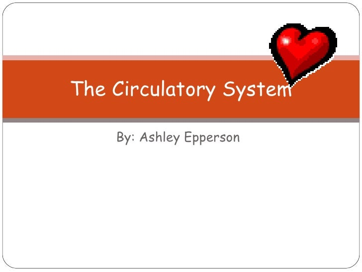 By: Ashley Epperson The Circulatory System