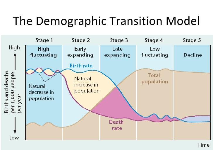 the demographic transition model analysis Figure 1 illustrates the demographic transition  can the model replicate the  decline in fertility that occurred  to the quantitative analysis, we ask: exactly how.