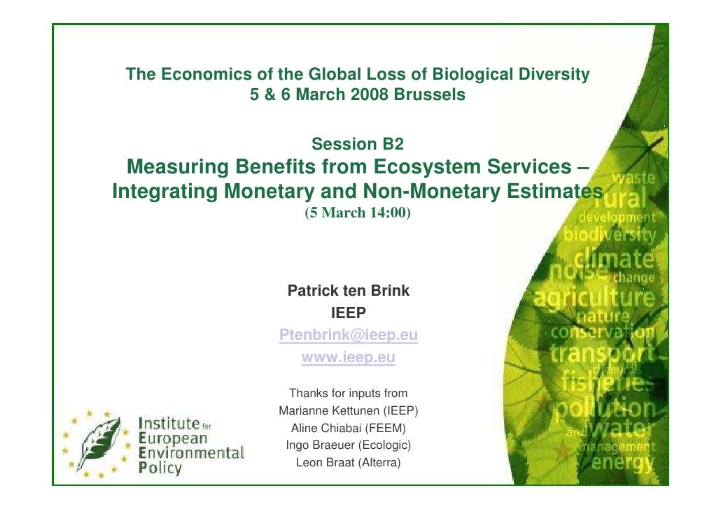 The Economics of The Global Loss of Biological Diversity Brussels Workshop March 2008 Patrick ten Brink of IEEP