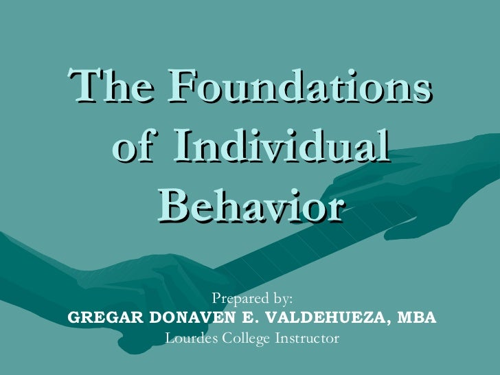 The Foundations of Individual Behavior