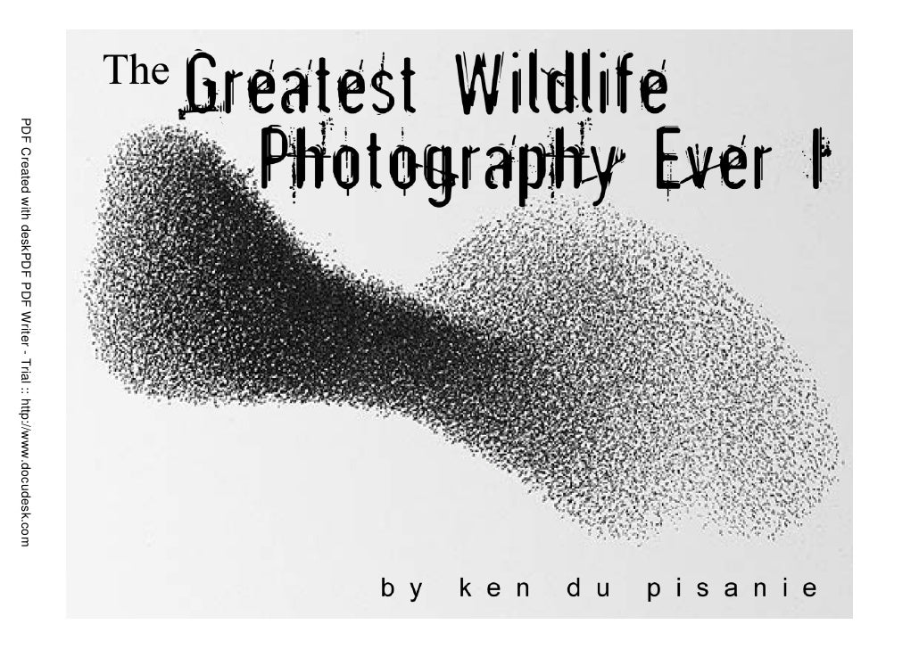 The Greatest Wildlife Photography Ever 1