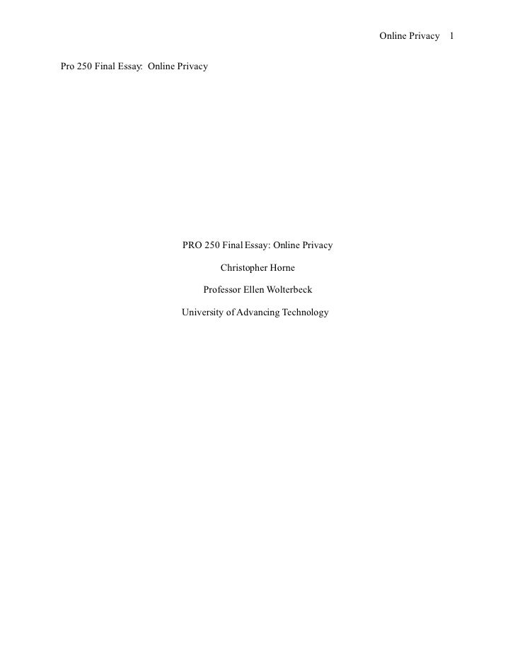 Online Privacy 1   Pro 250 Final Essay: Online Privacy                                 PRO 250 Final Essay: Online Privacy...