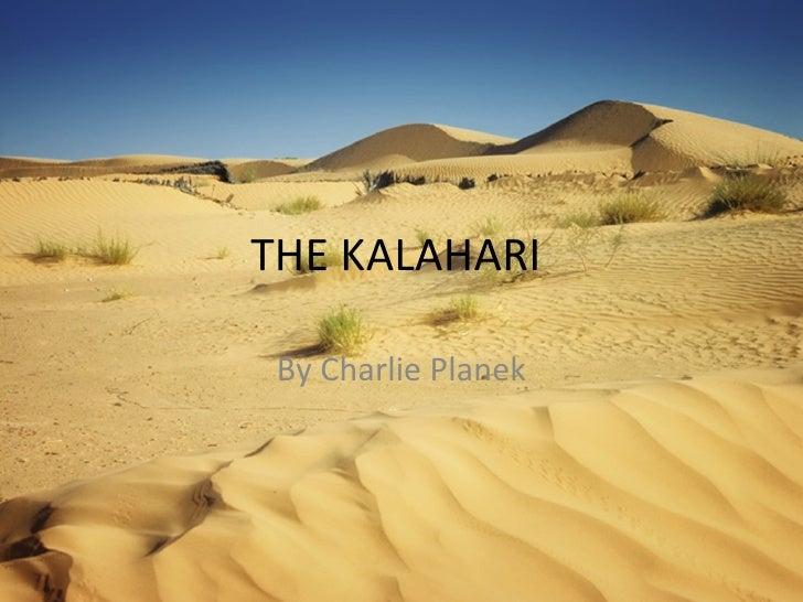 THE KALAHARI  By Charlie Planek