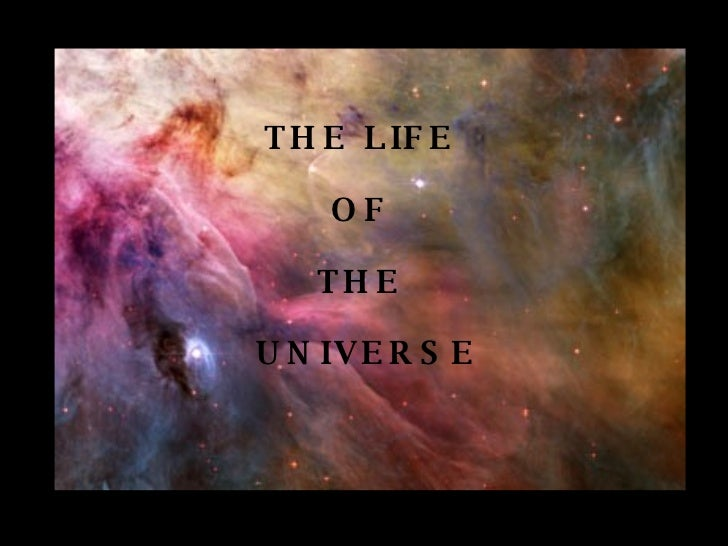 THE LIFE  OF  THE  UNIVERSE