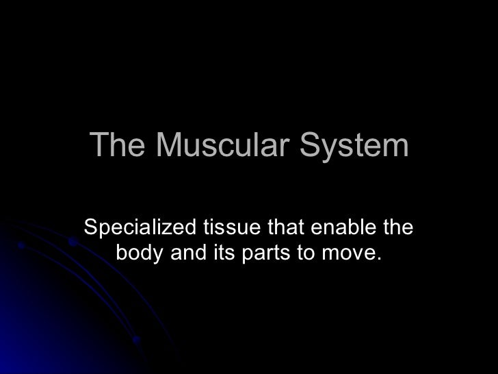 The muscular-system-powerpoint-by DR. BANTILES