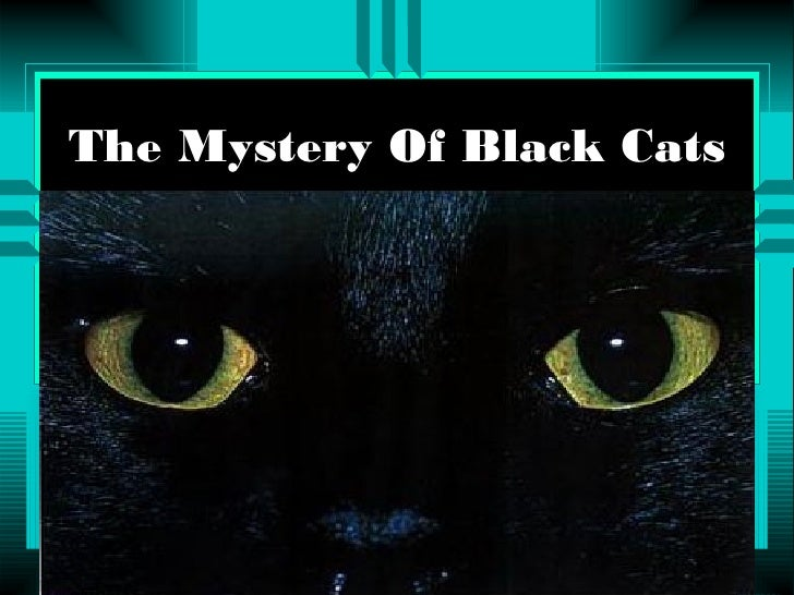 The  Mystery  Of  Black  Cats