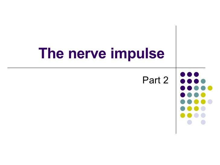 The nerve impulse  Part 2