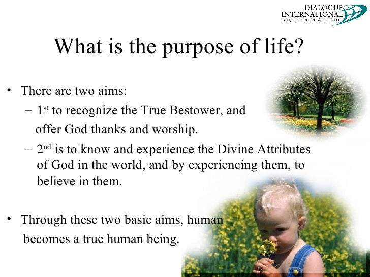 the purpose of life is a life of purpose essay 3 my purpose in life essay my life in a nutshell - 1760 words the correct term for what we were my parents grew up in loving but neglectful homes.