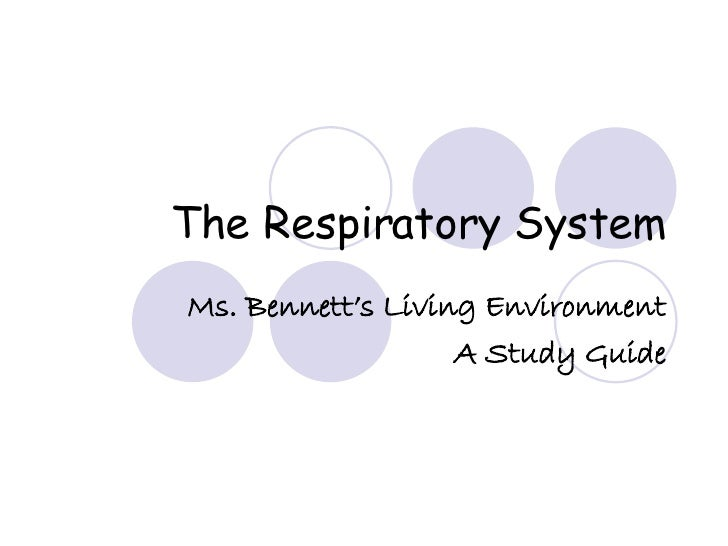 The Respiratory System Ms. Bennett's Living Environment A Study Guide