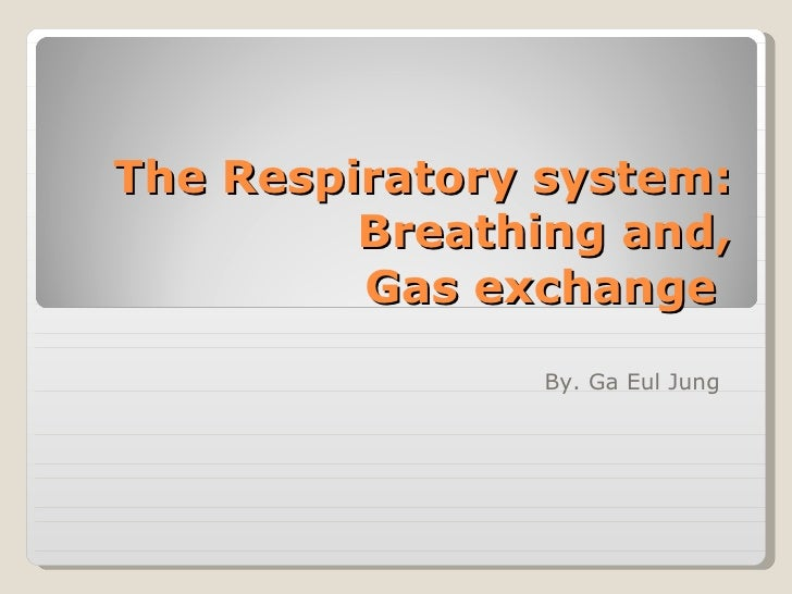 The Respiratory system: Breathing and,  Gas exchange  By. Ga Eul Jung