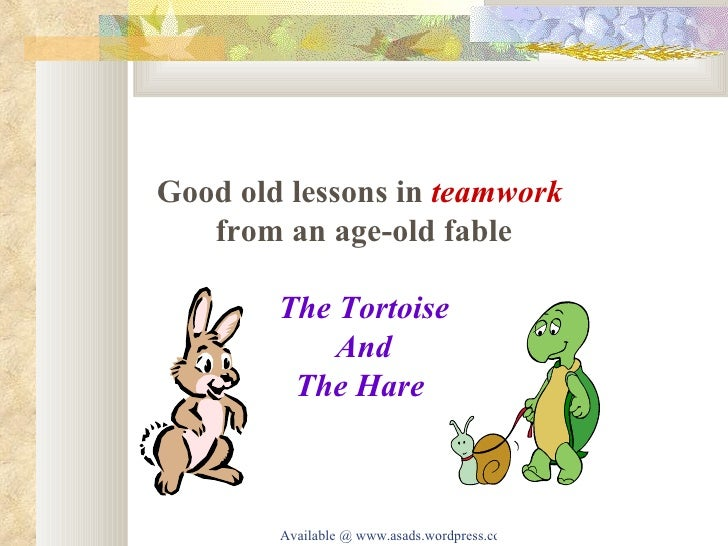 The Tortoise Story