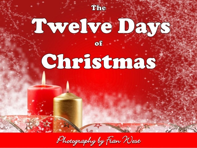 The 12 Days of Christmas 2013 by Fran West from Alzheimer's Products