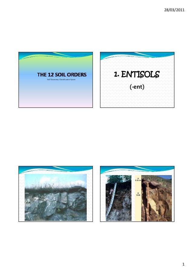 28/03/2011                                     1. ENTISOLSSoilTaxonomyClassificationSytem                              ...