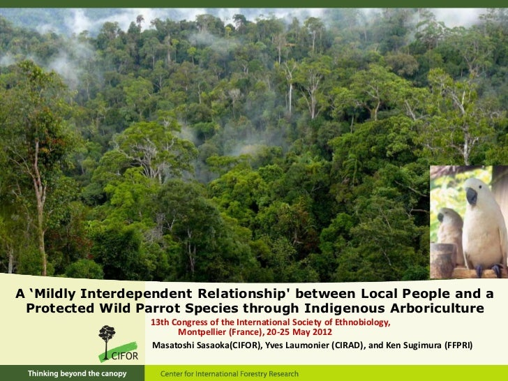 A 'Mildly Interdependent Relationship' between Local People  and a Protected Wild Parrot Species through Indigenous Arboriculture