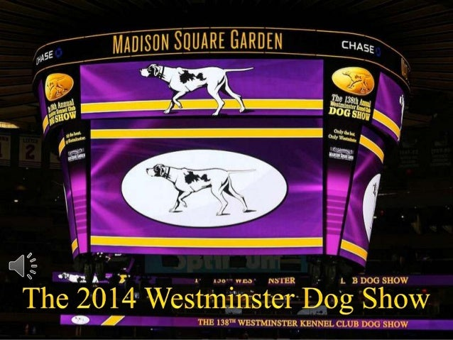 The 2014 westminster dog show (v.m.)