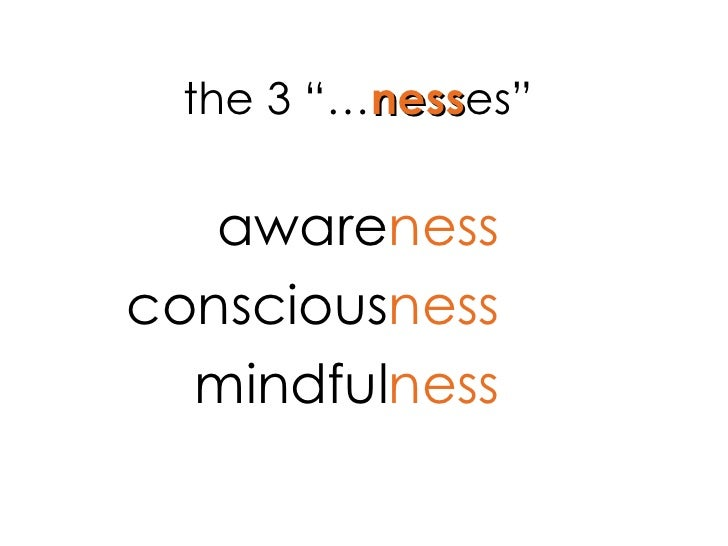"the 3 ""… ness es"" aware ness conscious ness mindful ness"
