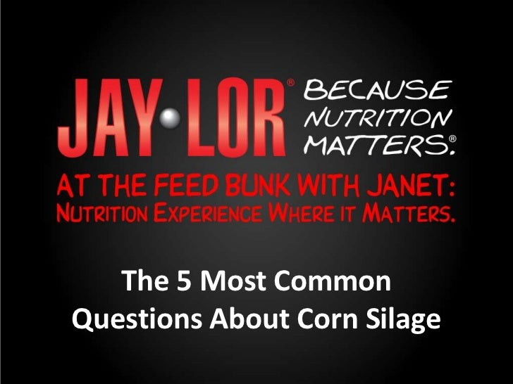 Jaylor: 5 Most Common Questions About Corn Silage