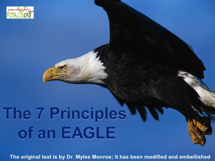 leadership lessons from eagles pdf