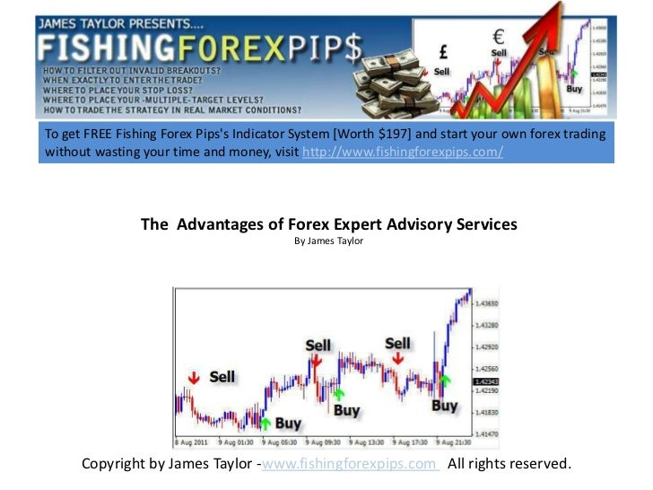 The  advantages of forex expert advisory services 1