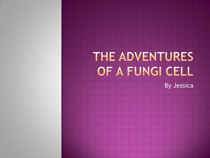 The Adventures of a Fungi Cell<br />By Jessica<br />