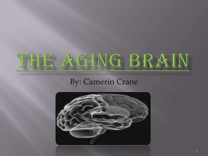The Aging Brain<br />By: Camerin Crane<br />1<br />