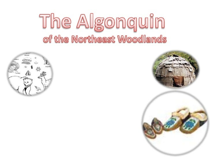 The Algonquin<br />of the Northeast Woodlands<br />