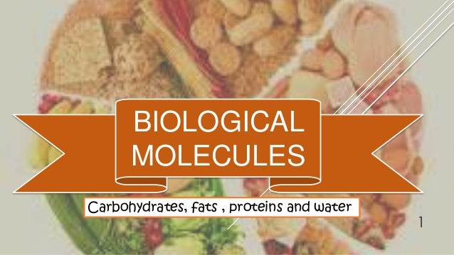BIOLOGICAL MOLECULES Carbohydrates, fats , proteins and water  1