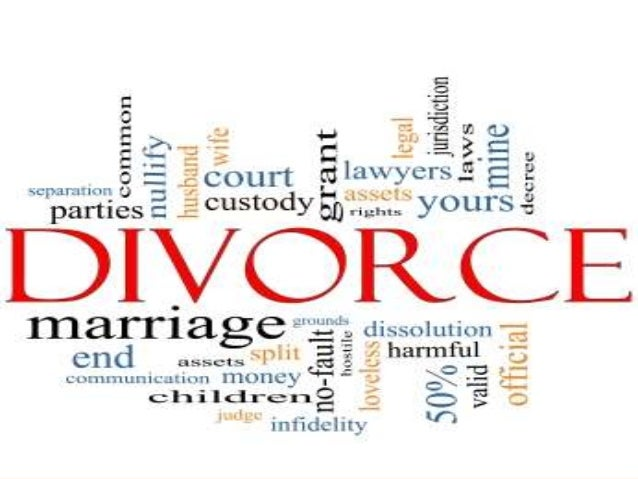 Modern Anatomy Of A Divorce Component - Anatomy And Physiology ...