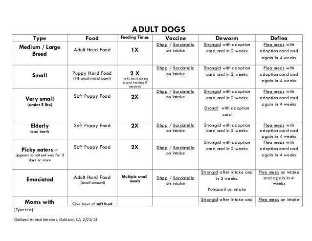 ADULT DOGS Type Medium / Large Breed Small  Very small  Food  Feeding Times  Vaccine  Deworm  Deflea  Adult Hard Food  1X ...