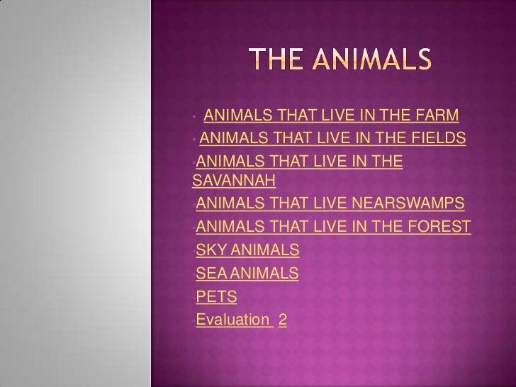 The animals informatica ii a