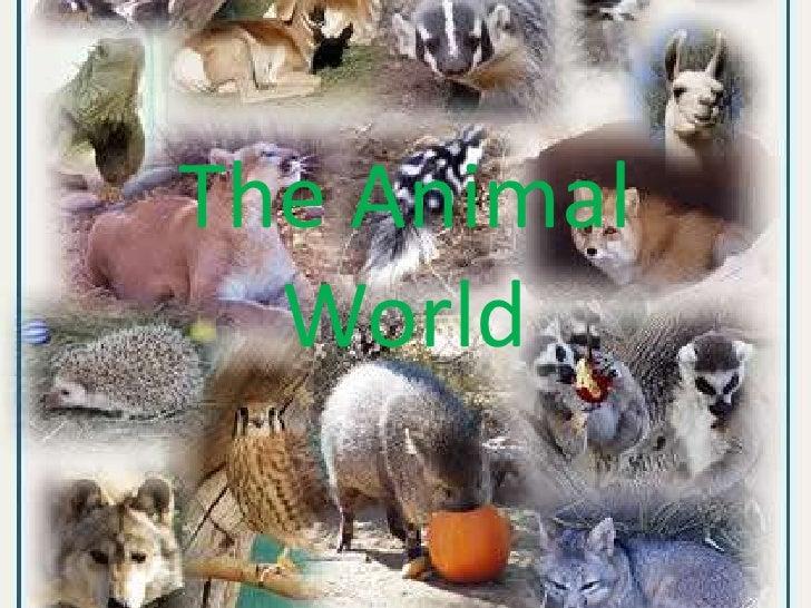 The Animal World<br />