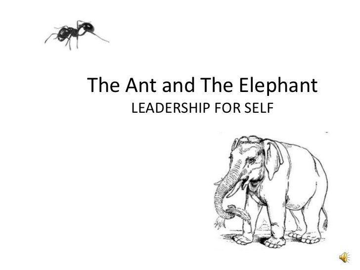 The Ant and The ElephantLEADERSHIP FOR SELF<br />