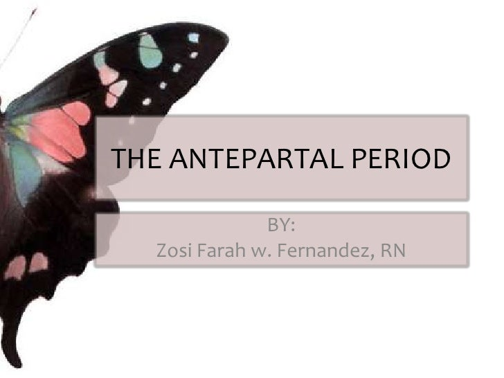 The Antepartal Period