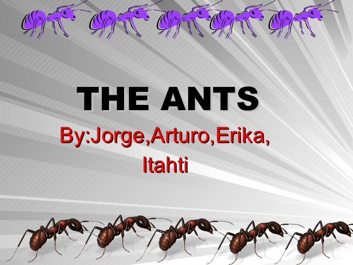 THE ANTS By:Jorge,Arturo,Erika, Itahti