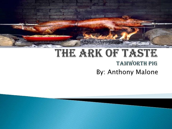 The Ark of TasteTamworth Pig<br />By: Anthony Malone<br />