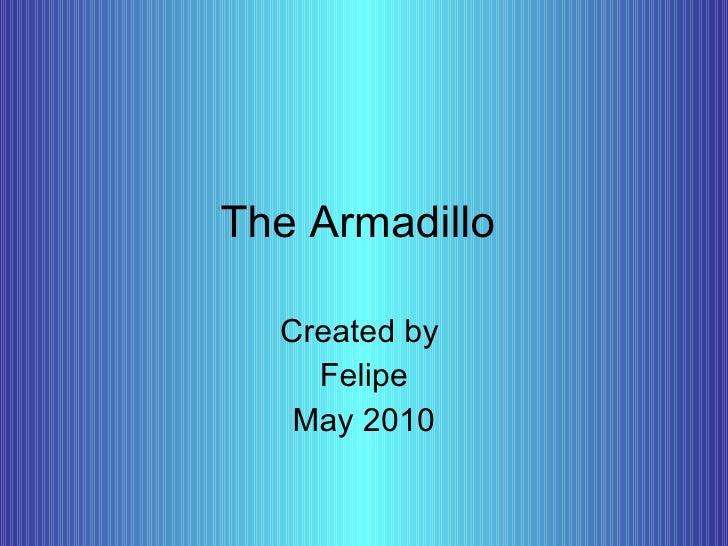 The Armadillo Created by  Felipe May 2010