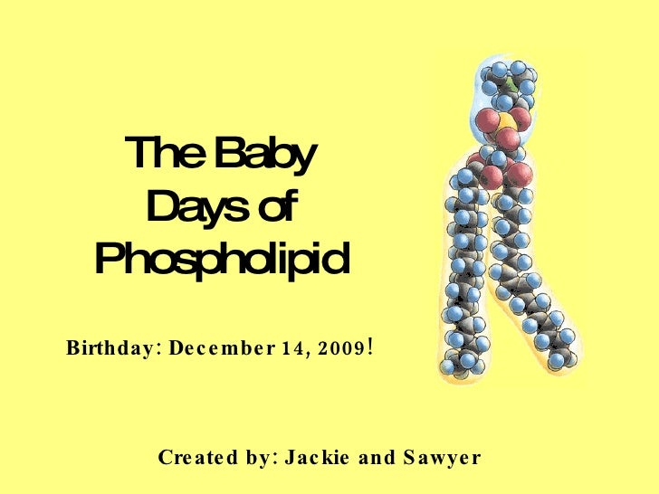 The Baby Days of Phospholipid Birthday: December 14, 2009! Created by: Jackie and Sawyer
