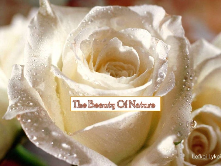 The Beauty Of Nature<br />LefkoiLykoi<br />