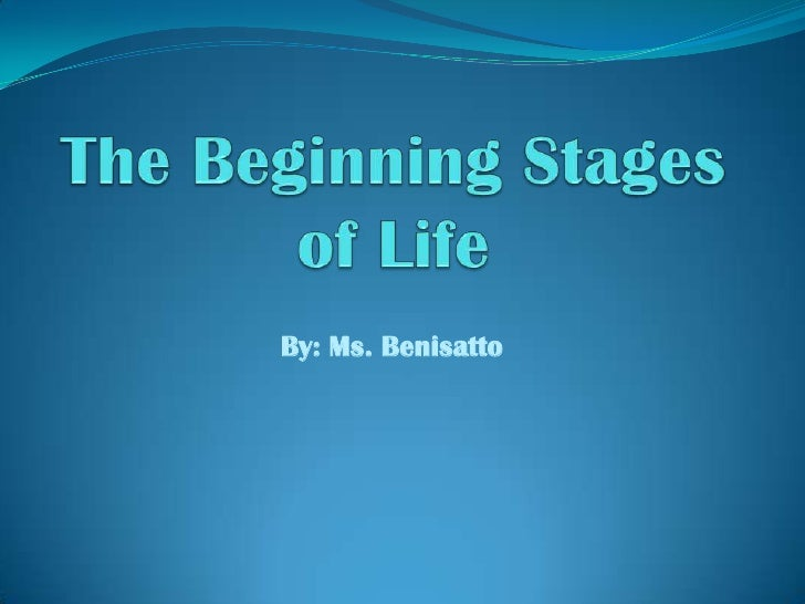 The Beginning Stages Of Life