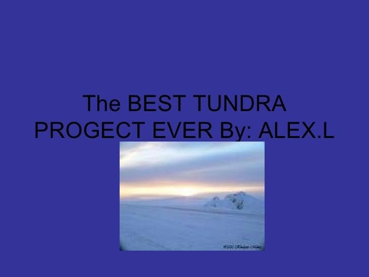 The Best Tundra Progect Ever Lott