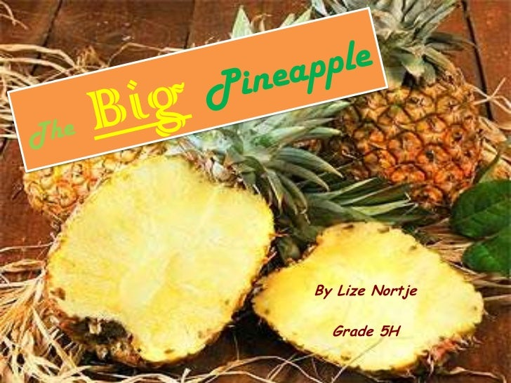 TheBigPineapple<br />By Lize Nortje<br />Grade 5H<br />