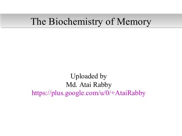The biochemistry of memory
