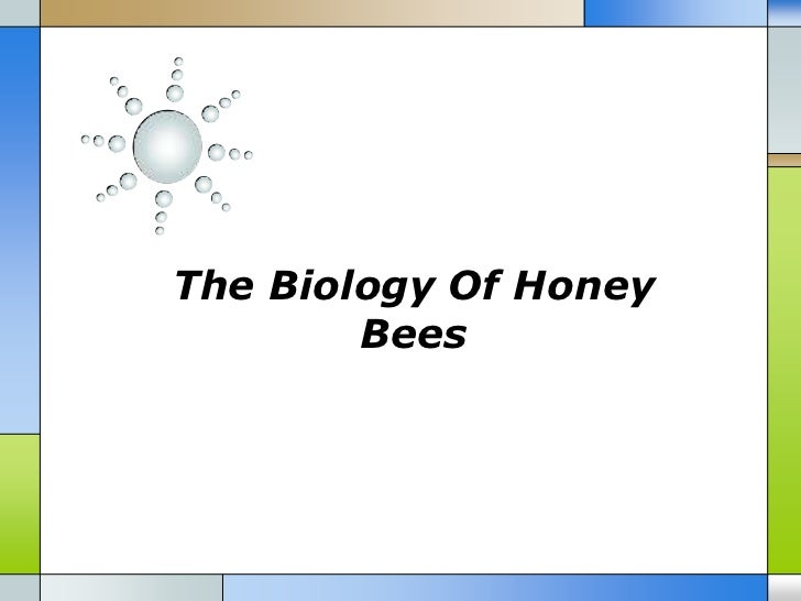 The biology of honey bees